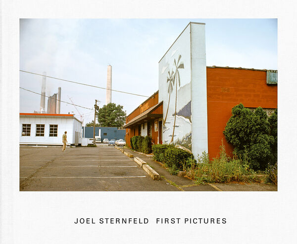 Joel Sternfeld – First Pictures