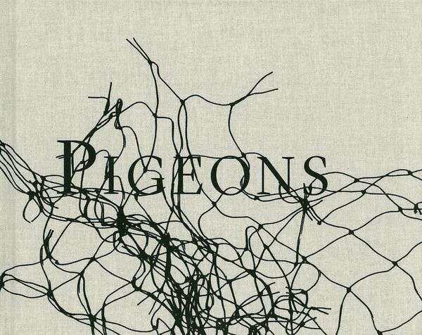 Stephen Gill – Pigeons